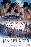 Cowboys for Christmas new cover