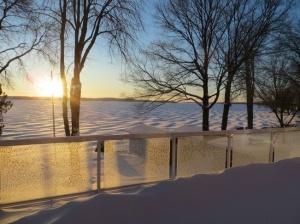 winterstormcameon