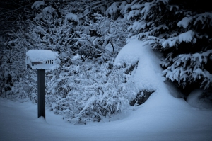 winterweathernetwork