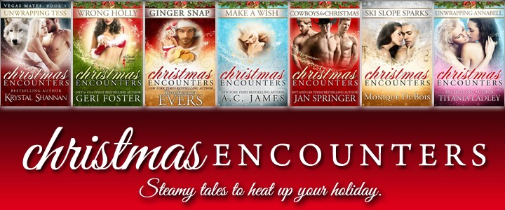 christmasencounters banner